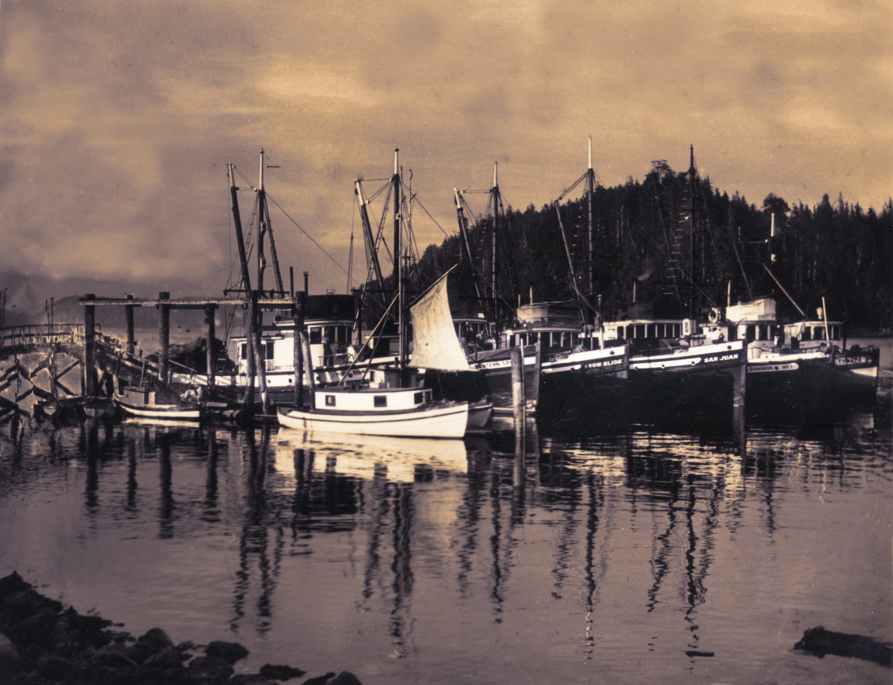 #6 - Fish boats, west Bamfield